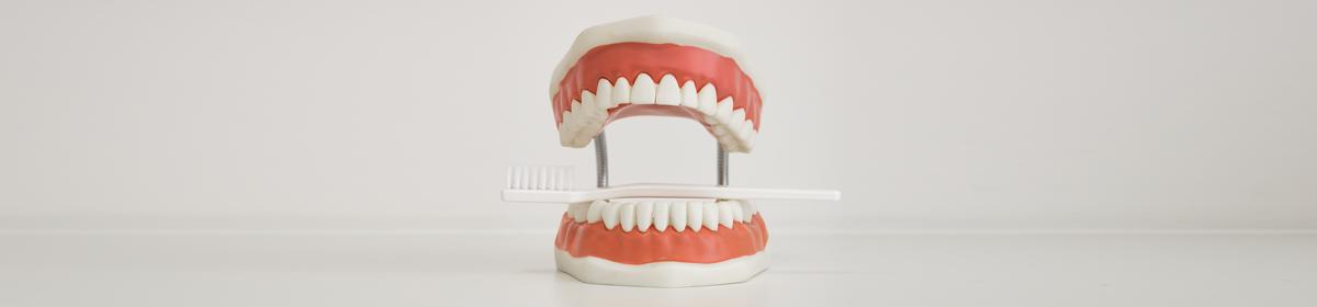 Zahnarztpraxis Mietz